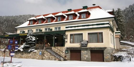 Hotel Pesentheinerhof