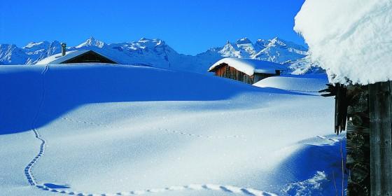 On the slopes of Montafon | Austria